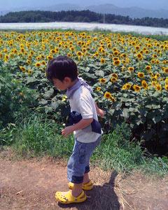 20090805_5.jpg