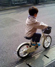 20091108_1.jpg