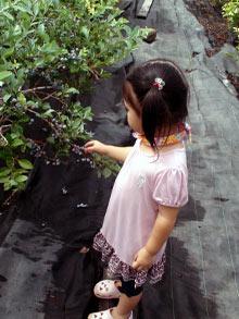 20100811_4.jpg