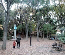 20061210_2.jpg