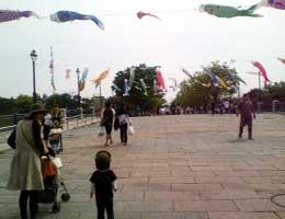 20070505_3.jpg