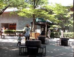 20060810_3.jpg