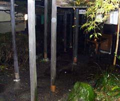 20061120_2.jpg