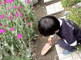 20070529_1.jpg